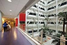 Auckland City Hospital
